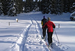 Cross Country Skiing and Other Outdoor Activities