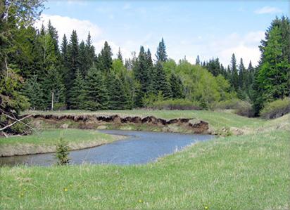 Wetaskiwin Acreages